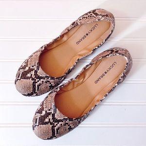 Lucky Brand Snake Print Emmie Ballet Flats Size 10